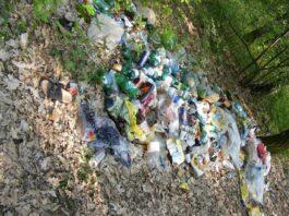 Notorycznie wywoził śmieci ze sklepu na parkingi leśne! Sprawca ukarany